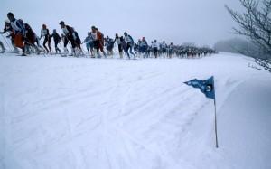 Il y a quelques année... la traversee du vercoIl y a quelques année... la traversee du vercors à ski de fondrs