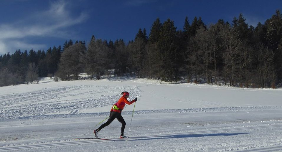 pas_alternatif_technique_classing_ski_nordique